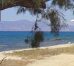 Partial view of Kastraki beach in Naxos island